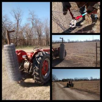 Unrolling fence wire!