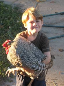 matthias-with-rooster-2